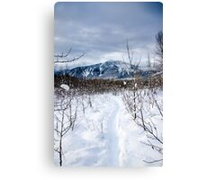 Snow day Revelstoke  Canvas Print