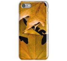 Autum Leaves iPhone Case/Skin