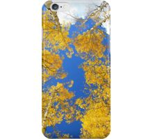 Aspen Filled Sky iPhone Case/Skin