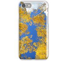 Aspen Filled Sky iPhone Case/Skin