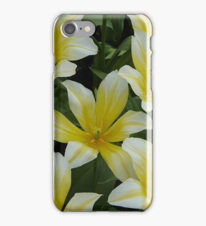 White/Yellow Tulips iPhone Case/Skin