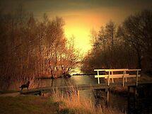 The Bridge by ienemien