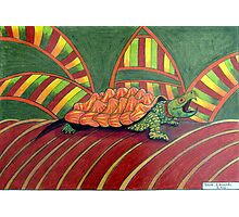 409 - ALLIGATOR SNAPPING TURTLE - DAVE EDWARDS - COLOURED PENCILS - 2014 Photographic Print
