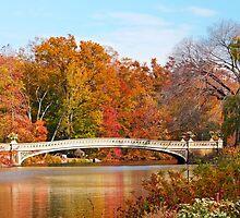 Central Park Bow Bridge by Ryan Mingin