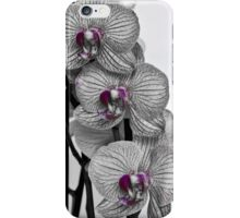 A splash of purple iPhone Case/Skin