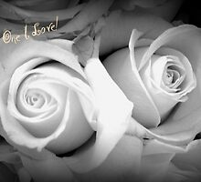 ROSES IN BLACK AND WHITE - TO THE ONE I LOVE! by Colleen2012