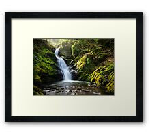 Wales- Dolgoch Falls Framed Print