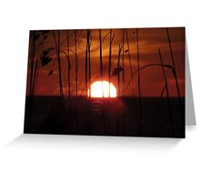 Farewell To The Day ~ Part Twenty Greeting Card