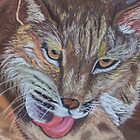 Bobcat in Pastel by Linda Sparks