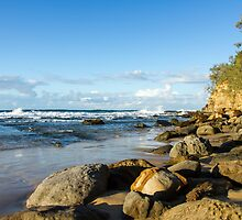 Point Cartwright, QLD by LizSB