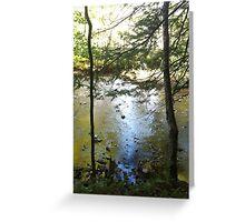 Remote Creek Greeting Card