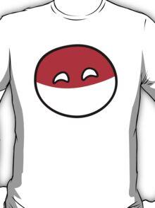 Polandball - Happy Poland Big T-Shirt