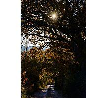 Una strada di campagna, Monticchiello, Toscana, Italia Photographic Print