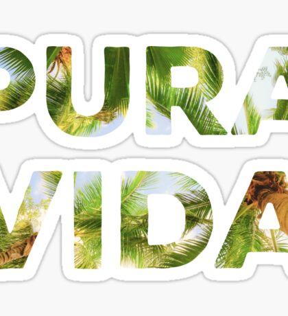 Pura Vida Costa Rica Palm Trees Sticker
