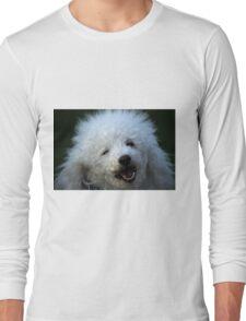 cute dog poodle Long Sleeve T-Shirt