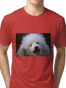 cute dog poodle Tri-blend T-Shirt