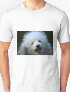 cute dog poodle T-Shirt