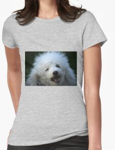 cute dog poodle Womens Fitted T-Shirt