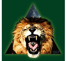 Lion Triangle Photographic Print
