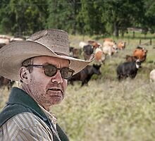 Gonna herd me some cattle by randymir