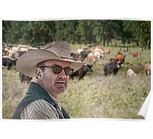 Gonna herd me some cattle Poster