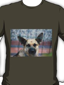 tiny terrier dog T-Shirt