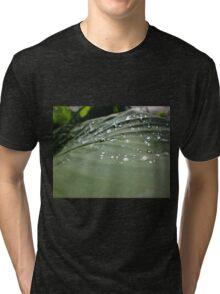 Water droplets on leaf Tri-blend T-Shirt