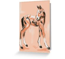 Foal Peach Greeting Card