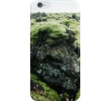 Rocks & Moss iPhone Case/Skin
