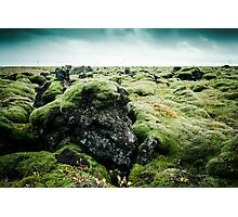 Rocks & Moss Photographic Print