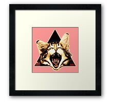 Kitten Triangle Framed Print