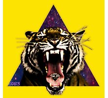 Tiger Triangle Photographic Print