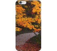 Golf course trail iPhone Case/Skin