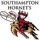 Hornet's Hockey 2 by Edge1989uk