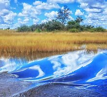 Surfing Safari – Duba Plains style by Owed to Nature