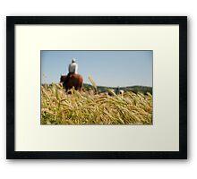 Fields of Grain Framed Print