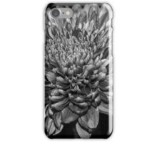 Chrysanthemum Mono iPhone Case/Skin