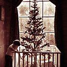 Early Christmas by Mishka Gora