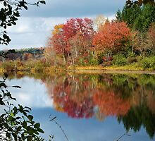 Colorful Fall Reflection Landscape by Christina Rollo