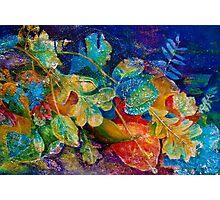Leafin an Imprint Photographic Print