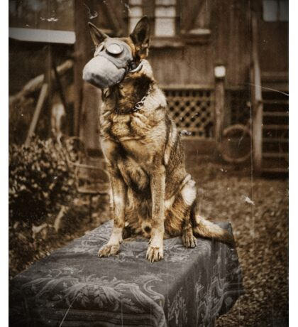 German Shepherd in Gas Mask  Sticker