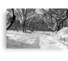 Winter Wonderland, Central Park Canvas Print