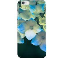 Peek a Blue iPhone Case/Skin