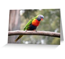 Out on a Limb! Greeting Card