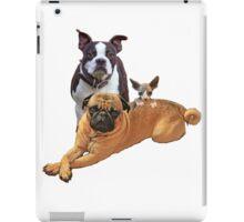 Pug Boston terrier cat iPad Case/Skin