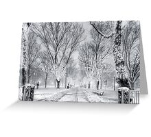Snow's path down Comm Ave Greeting Card