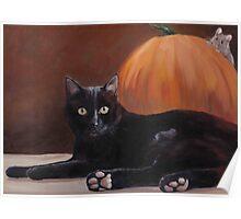 Sneak Peek Black Cat & Pumpkin Poster