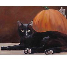 Sneak Peek Black Cat & Pumpkin Photographic Print