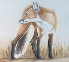 Red Fox Looking Back by Charlotte Yealey