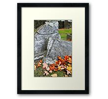 Time Changes All Things Framed Print